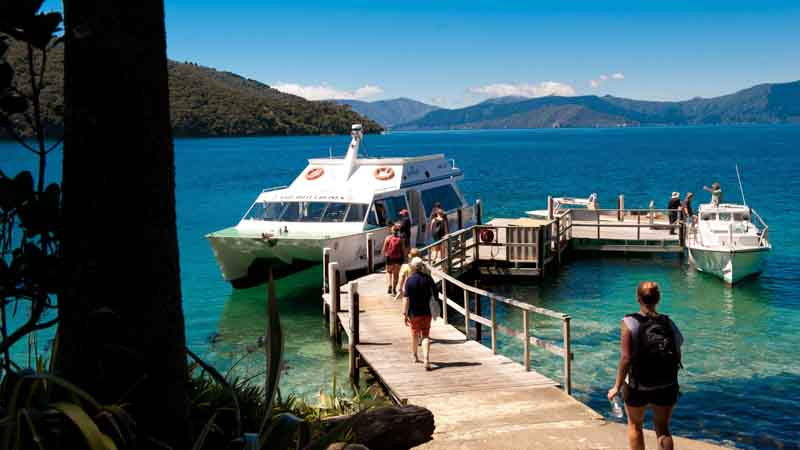 Experience the stunning Queen Charlotte Sounds aboard the Magic Mail Boat for an epic half day cruise!