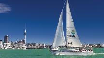 Harbour Sailing Cruise - Explore Group