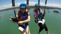 Flying Kiwi Parasail - 1,300ft Flight - Paihia