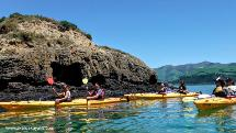Akaroa Guided Sea Kayak Safaris - 3 Hour Adventure