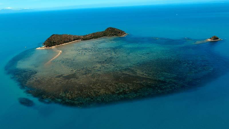 Double Island: Port Douglas
