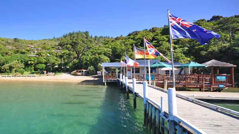 Picton Scenic Boat Cruise and partial Queen Charlotte Track Walk. Stunning half day walk and scenic cruises.