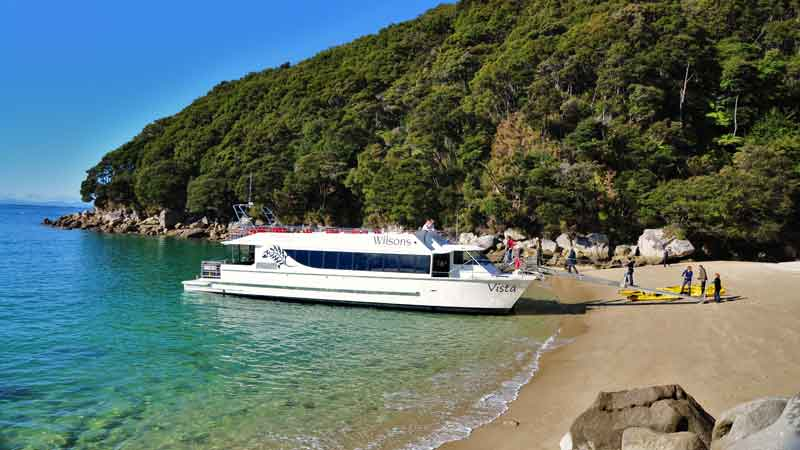 Join Wilsons Abel Tasman for an extra special cruising day trip into the magical Tonga Island Marine Reserve and beyond.
