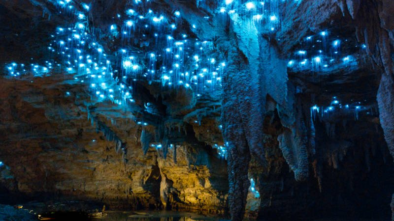 CAVEWORLD FOOTWHISTLE GLOWWORM CAVE  tour waitomo Footwhistle Caves glow worms