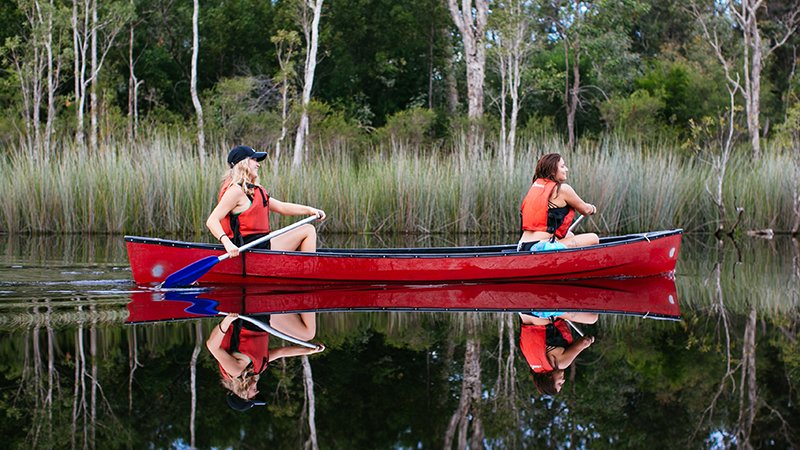 Explore the Noosa Everglades with by canoe and boat on the popular Cruise N' Canoe day tour ex Noosa.