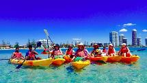Quick Escape Kayaking Tour - 2.5 hours - Biggera Waters