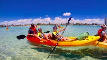 Chill Out Kayaking Day Tour - Biggera Waters