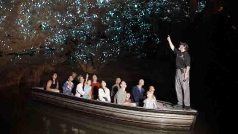 glowworm caves deals