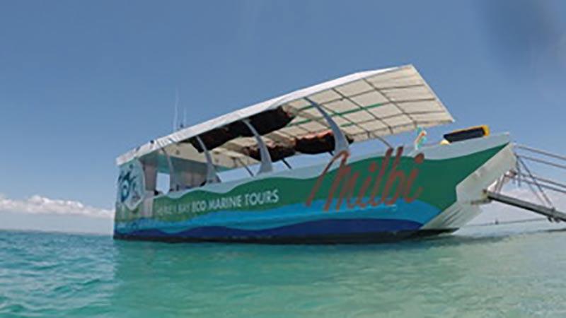 Hervey Bay Glass Bottom Boat Tours