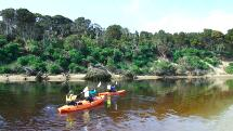 Kayak Hire Papatowai - The Catlins - Half Day