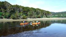 Kayak Hire Papatowai - The Catlins - 1 or 2 Hours