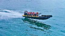 1 Hr Adventure Rafting Thriller and Tour - Mooloolaba