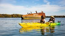 Dolphin Sanctuary & Shipwreck Heritage Trail Kayaking