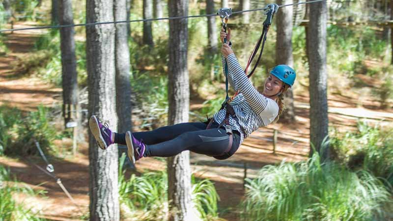 Tree Adventures - High Flyer - Courses 5-8